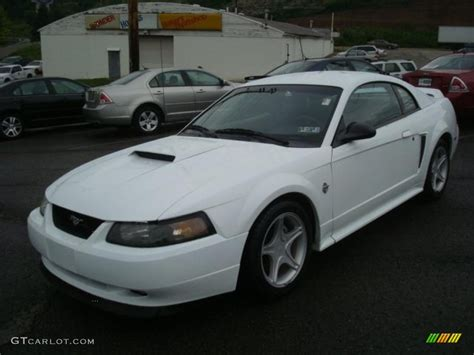 1999 white ford mustang 1999 white ford mustang gt coupe 31478079 photo