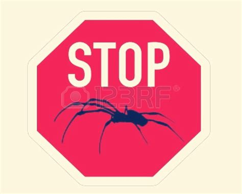 how to stop in house how to stop spiders coming in your house trusper