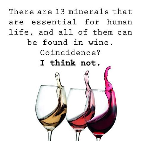 chardonnay minx quotes it books 25 best ideas about wine funnies on wine