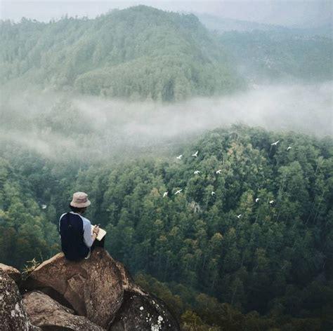 Batu Bintangbisa Menyala Hijau Dalam Air 13 surga dalam dunia nyata ini cuma bisa kamu temukan di indonesia berjambang