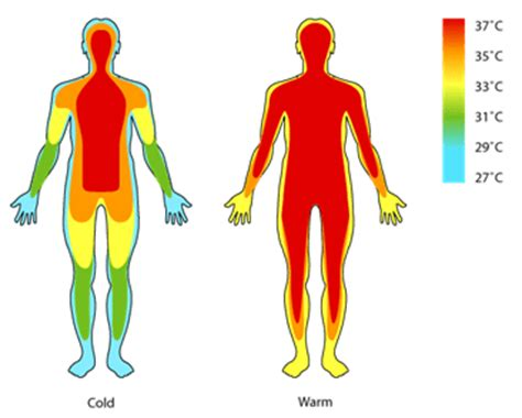 comfortable water temperature low body temperature symptoms and causes and how to treat it