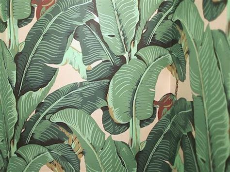 banana leaf wallpaper beverly hills hotel how to wallpaper your powder room youtube