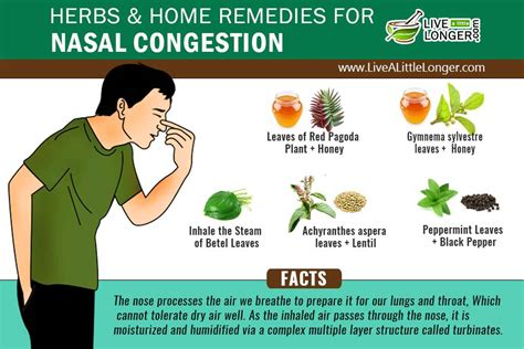 5 home remedies for nasal congestion relief