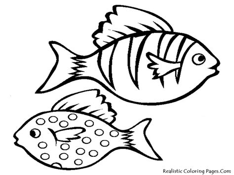 Aquarium Fish Printable Coloring Sheet Realistic Printable Fish Coloring Pages