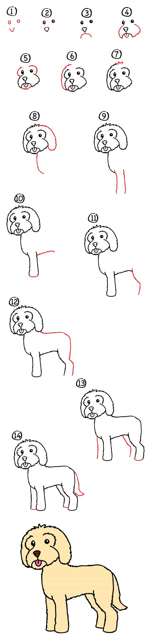 goldendoodle drawing how to draw a goldendoodle for hub