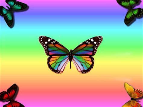wallpaper cantik kupu kupu wallpaper animasi kupu kupu cantik