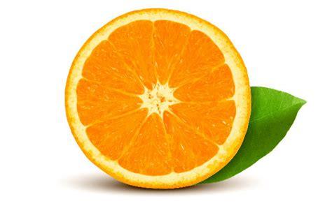 vector orange tutorial how to create quickly a realistic vector orange by lazunov