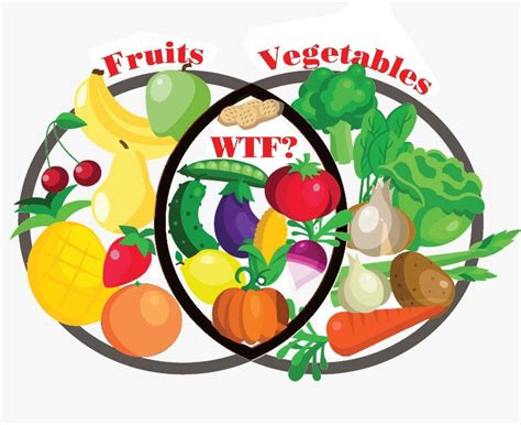 fruit or vegetable venn diagram fruit or vegetable sfoodie