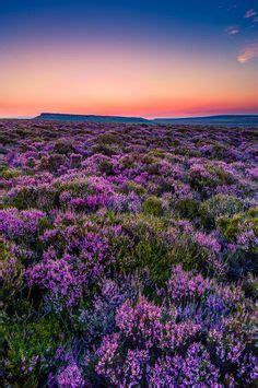 english sunset spectacular scenery pinterest gorgeous sunsets and spectacular scenery or seascapes on
