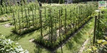 les grands principes du potager bio jardin
