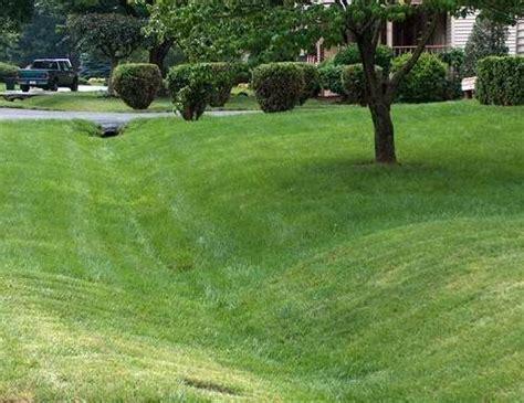 Backyard Landscape Design Ideas glossary solving drainage and erosion problems fairfax