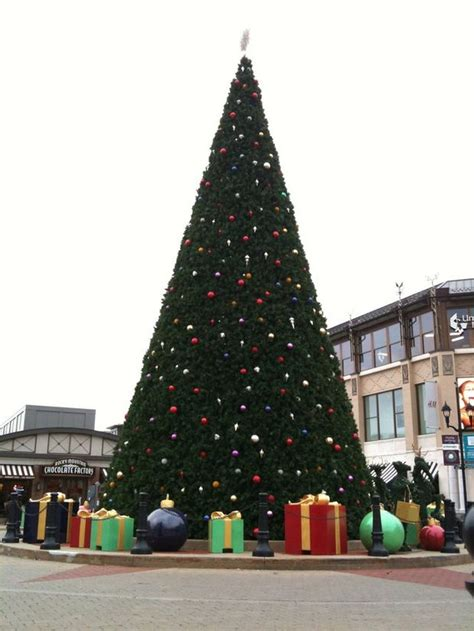 westlake tree lighting nov 19 at crocker park cleveland com