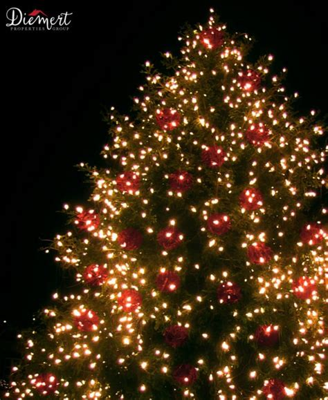 best places to see christmas lights in snohomish county wa