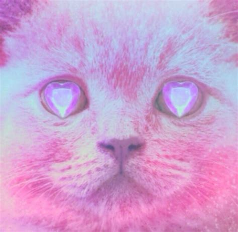 Ziggy Pastelle Pink cat colourful diamonds gems kawaii pastel pink