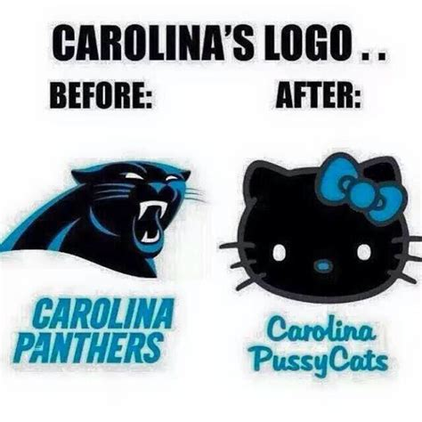 Panthers Suck Meme - 19 best cam newton memes images on pinterest carolina