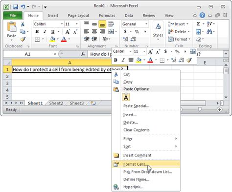 format excel cell as checkbox when the format cells window appears select the