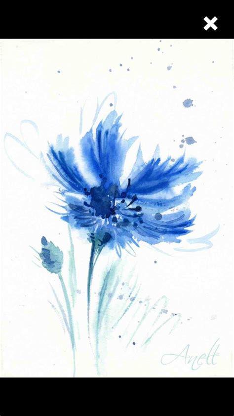 corn flower blue flower inspiration blue flowers painting inspiration pinterest blue