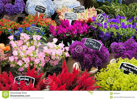 Flowers For Sale by Colorful Flowers For Sale Stock Images Image 25869254