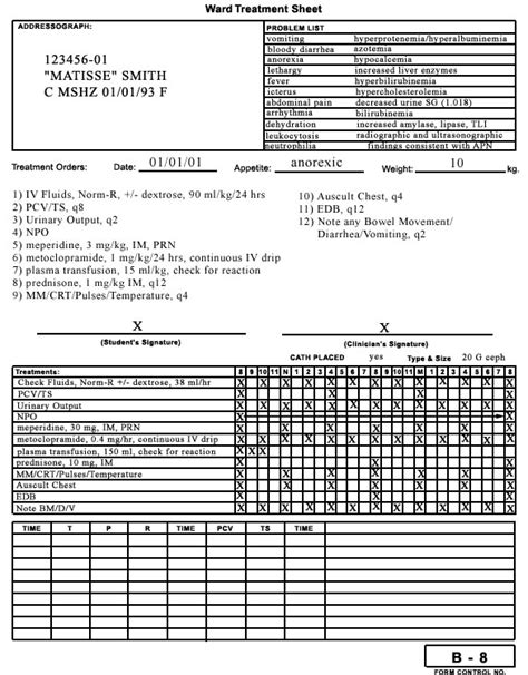treatment sheet template controlled substance inventory log template