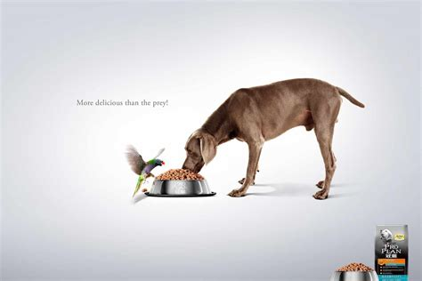 puppy ads pet food ads of the world