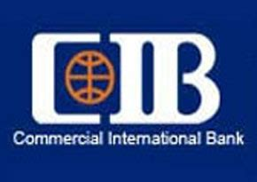 cib international bank cib organises workshop to advertise sme services daily
