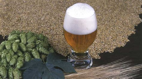 fare la birra in casa homebrewing come fare la birra in casa