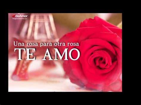 imagenes para decir te amo al amor de mi vida 10 im 225 genes de rosas para decir te amo al amor de tu vida