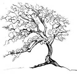 black and white japanese cherry blossom tree drawing