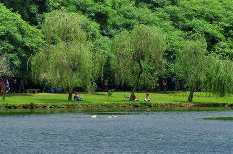 imagenes zonas verdes chile santiago tendr 225 210 nuevas hect 225 reas de 225 reas