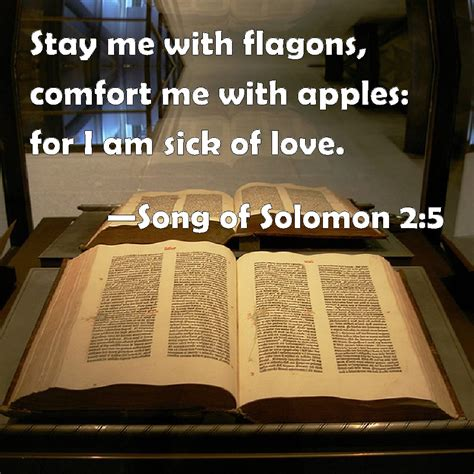 stay me with flagons comfort me with apples song of solomon 2 5 stay me with flagons comfort me with