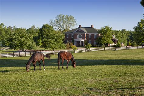 ranch farmhouse guilford county horse farm for sale 6875 bowman dairy road