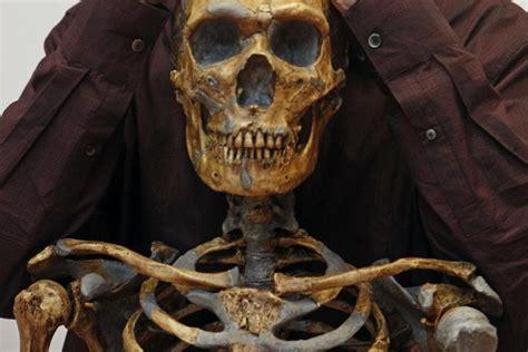 Anthropologie Deutschland by Anthropologie News Die Welt