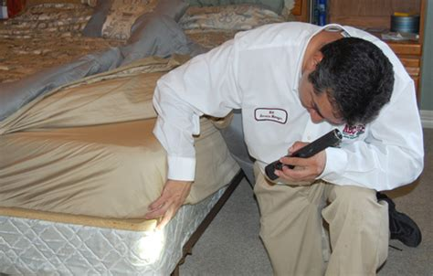 bed bugs treatment products corpus christi bed bug treatment abc home commercial