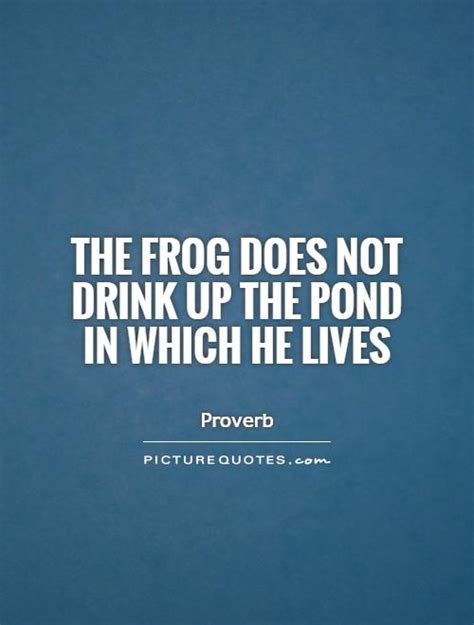 pond quotes the frog does not drink up the pond in which he lives