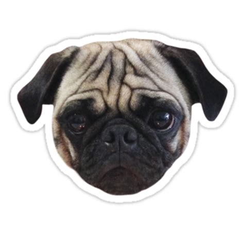pug png quot caesar the pug by aireal apparel quot stickers by airealapparel redbubble