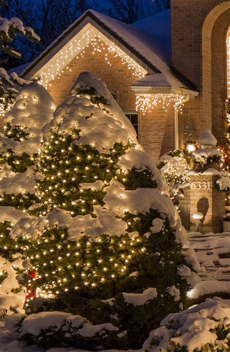 christmas lights for bushes 149 best outdoor christmas decorations images on pinterest