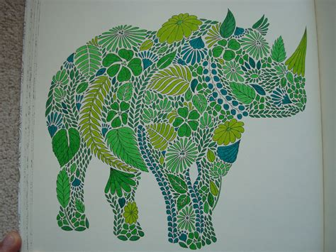 millie marottas animal kingdom google search art