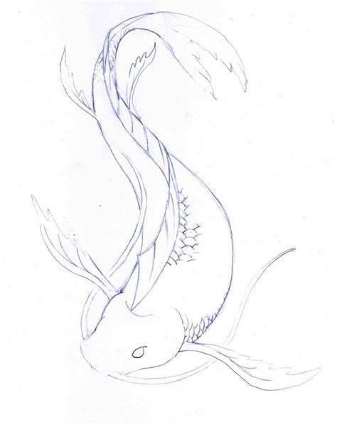 Drawing Koi Fish by Koi Fish Pencil And In Color Koi Fish