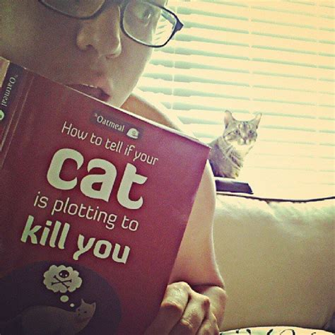 how to tell if your cat is plotting to kill you the oatmeal 273606952754351861 63793bb90c5a jpg
