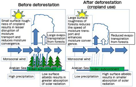 deforestation diagram image gallery deforestation diagram