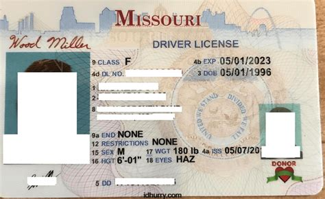 louisiana id template gallery templates design ideas
