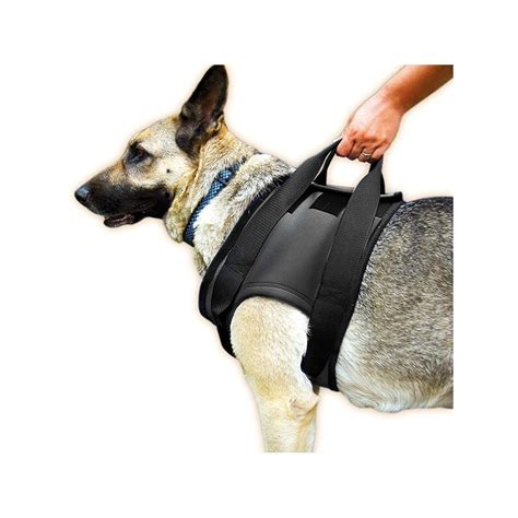 and shoulders for dogs ortocanis rehab harness for shoulders by julius k 9