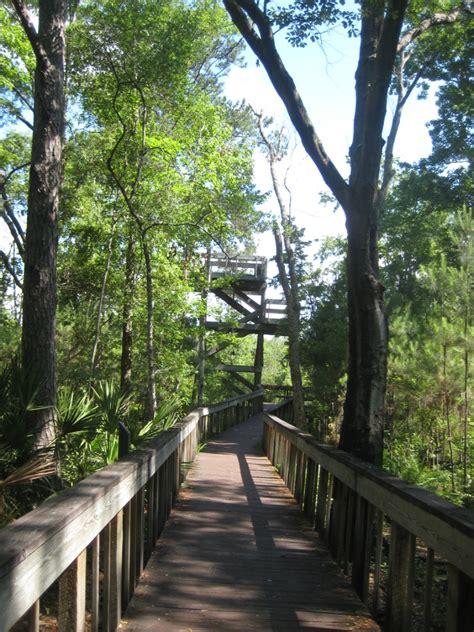 tillie fowler park tillie k fowler regional park review jaxhikes com