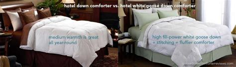 pacific coast feather pyrenees down comforter pacific coast down comforter pinzon signature pyrenees