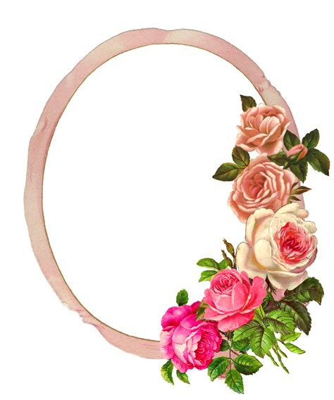 graphics monarch  pink rose digital flower frame