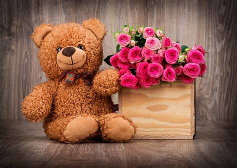 wallpaper pink teddy bear cute teddy bear wallpaper with pink roses in box hd