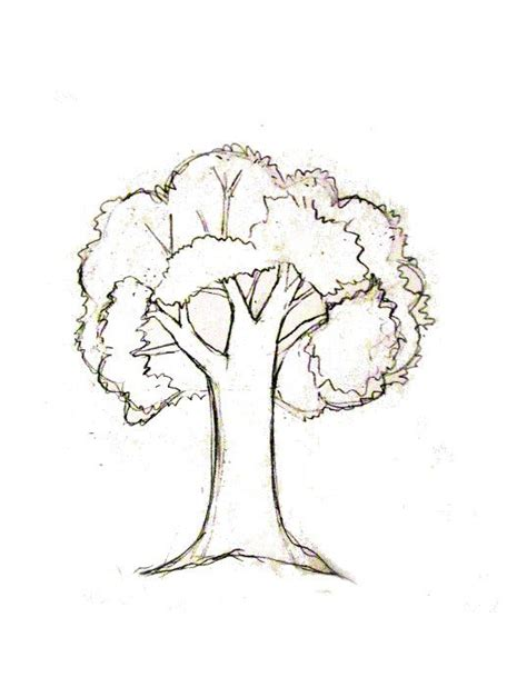 Drawing Trees by How To Draw A Tree Tutorial Journaling