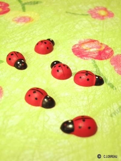 deco table coccinelle 17 best images about petits animaux rigolos on