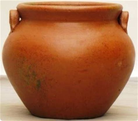 Mexican Pot Mexican Pot 25 Indoor Pots And Planters By