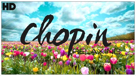 best relaxing the best relaxing classical by chopin